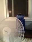 First Night's Ice Fan